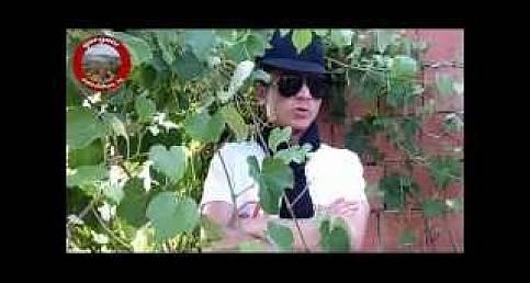 KUZİNE TANITIM FİLMİ - YouTube